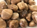 CHOCOLATE CALCITE 'Stone of the Mind'