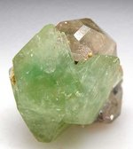 GREEN HERDERITE Accelerate One's Evolutionary Growth