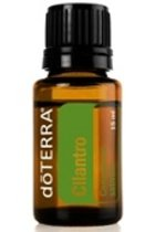 CILANTRO OIL 15ML CORIANDRUM SATIVUM