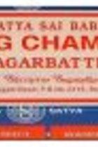 NAG CHAMPA INCENSE 40GMS