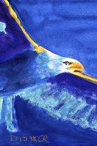 EAGLE ANIMAL SPIRIT