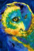 OWL ANIMAL SPIRIT